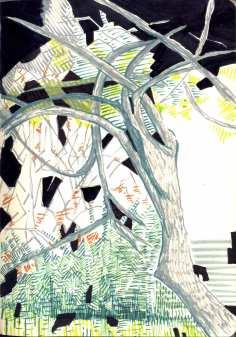 arbres008