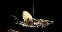 VIDEO >PERFOMANCE - TRIO BEK -